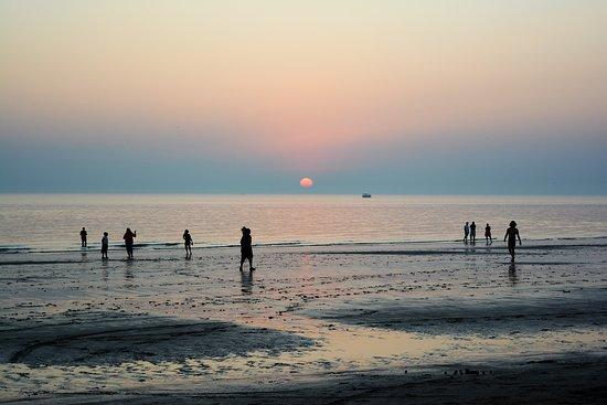 Image result for 9. Mandvi beach images
