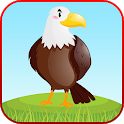 Bird Sounds Fun Learning Games - Coloring & Puzzle icon