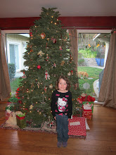 Photo: The Bressler Christmas Tree, 2013