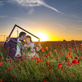 Sunset frame by Doru Iachim - Wedding Bride & Groom ( love, bride, groom, flowers, grass, sunset, kiss, frame )