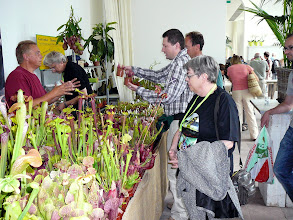 Photo: ICPS Conference in Leiden (NL) 2010. The stand of Thomas Carow (2nd from left) with Kamil Pasek receiving plants, and Irmgard Hartmeyer.