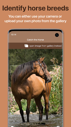 Download Horse Scanner - #1 Horse Breed Identification 7.1.0-G 1