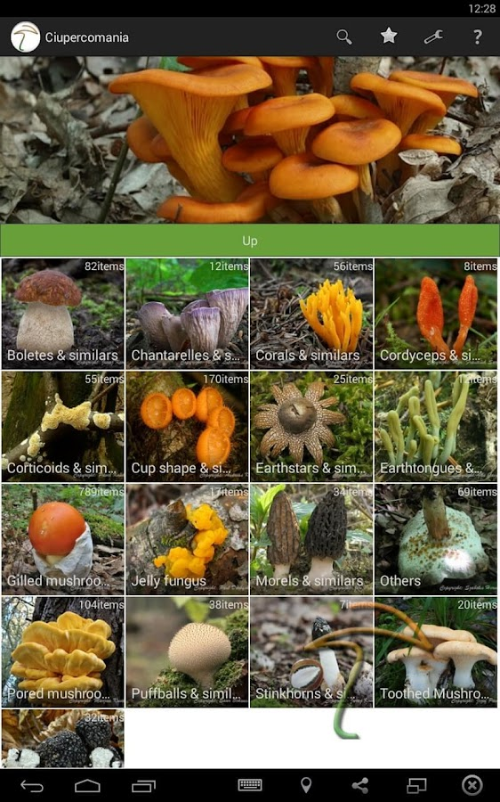 Ciupercomania - mushroom guide- screenshot