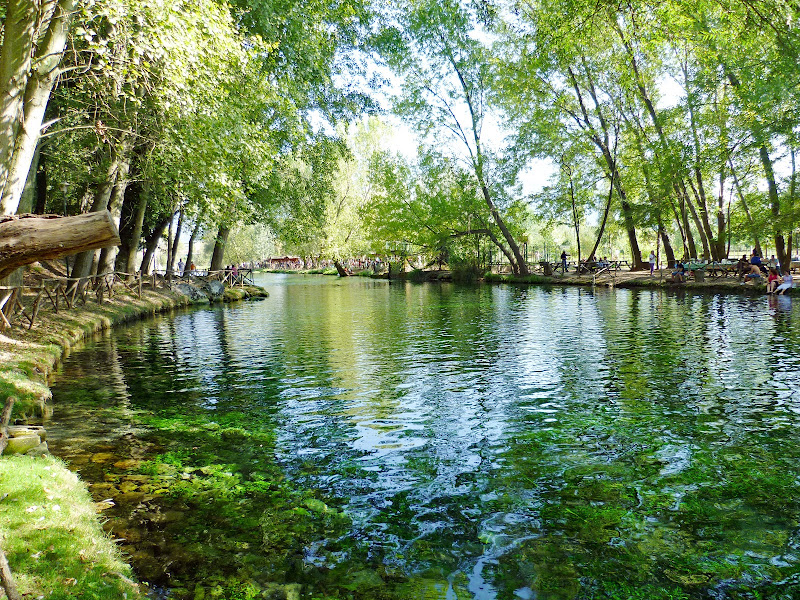 Verde acqua di Emmezeta81