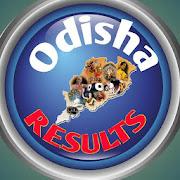 all odisha results