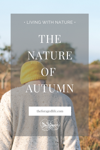 Autumn- myths & mother nature | Living with Nature by The Foraged Life