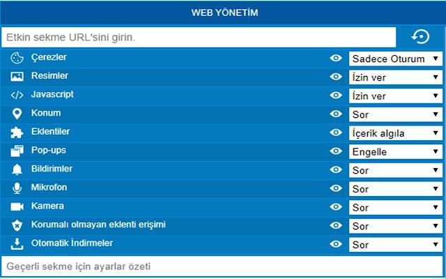 WEB Yönetim