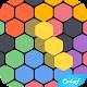 Hex Puzzle (game)