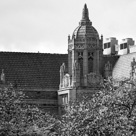 University of Washington  by Todd Reynolds - Black & White Buildings & Architecture