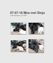 Photo: Collage van Angel samen met de Balinees Sinjo