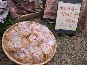 Photo: 笹谷窯が持ってきてくれた原木なめこ