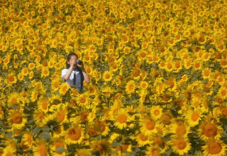 映画『写真甲子園 0.5秒の夏』PRムービーより