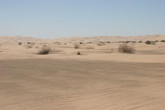 Photo: Auch diese Naturschönheit ist in erster Linie Spielplatz für Besitzer von Motorgeräten