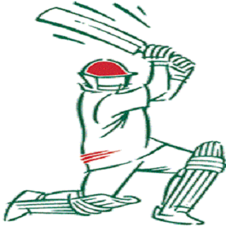 Dasia Sports Cricket