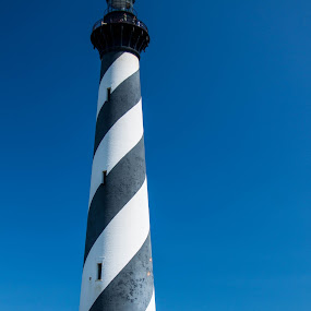 Cape Hatteras Light by Angela Moore - Buildings & Architecture Public & Historical ( cape hatteras, outer banks, lighthouse, north carolina )