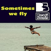 Sometimes We Fly