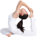 Stretches for Flexibility APK