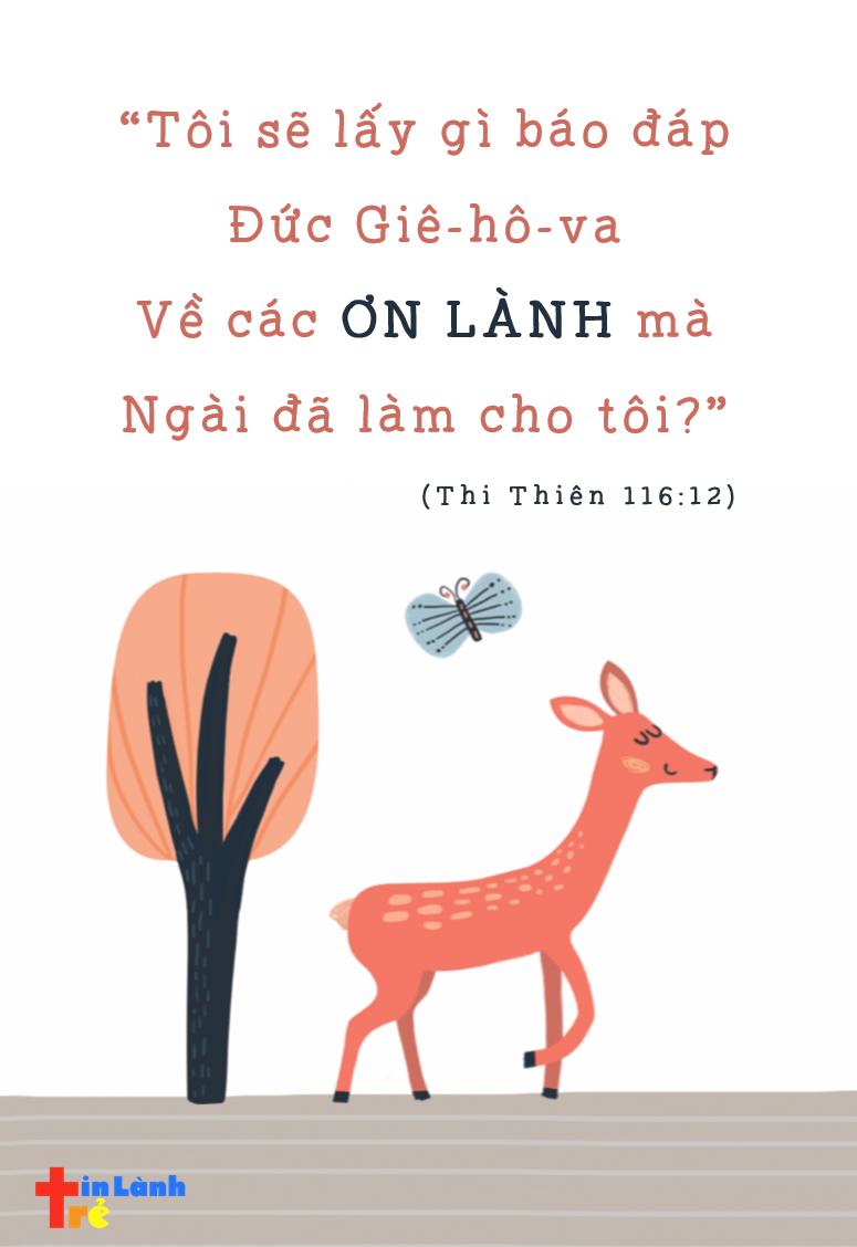 """""""Tôi sẽ lấy gì báo đáp Đức Giê-hô-va Về các ơn lành mà Ngài đã làm cho tôi?"""" -Thi thiên 116:12"""