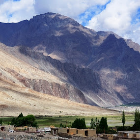 Vastness in colours and shades by Tridibesh Indu - Landscapes Mountains & Hills ( landscapes, pangong, shades, green, coloursofindia, incredible, scale, india, nubra, beautiful, vastness, vast, desert, lake, ladakh, travelrealindia, colours )
