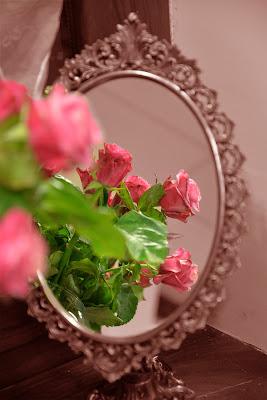 Lo specchio delle rose di Bemolle