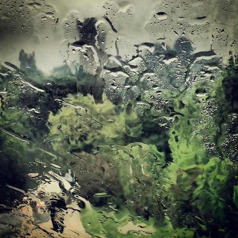 Verde... acqua di Francesca Malavasi