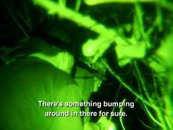 Episode 203: Wildman/Swamp Dinosaur