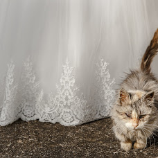 Wedding photographer Lena Fomina (LenaFomina). Photo of 27.11.2018