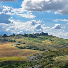 by Marjan Gresl - Landscapes Prairies, Meadows & Fields (  )