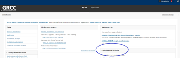 screenshot of the tutoring instrucations