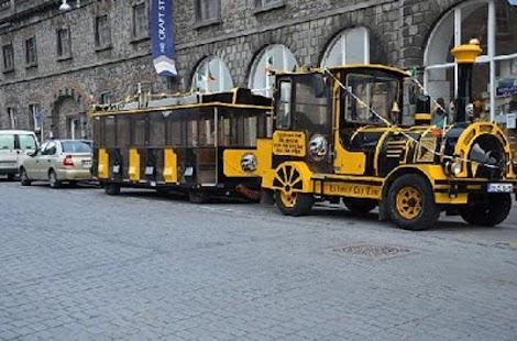 Kilkenny City - náhled