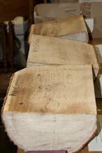Photo: Kentucky Coffeetree wood from a champion tree taken down in Darnstown.