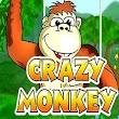 Disnoy crazy pictures monkey icon