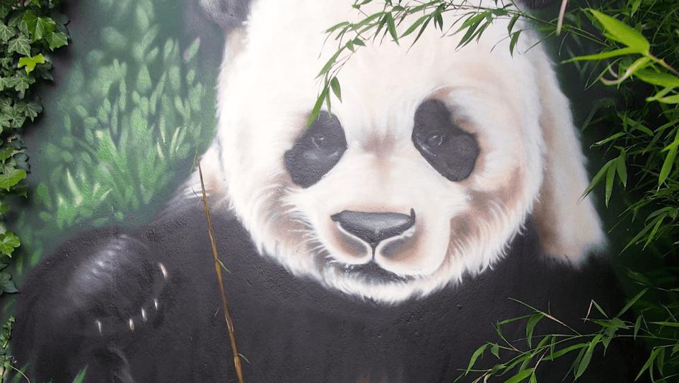 Doudou Style - Panda