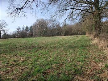 terrain à Argenton-sur-Creuse (36)