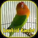 Lovebird Konslet Ngekek Juara icon