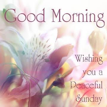 Good Morning Friends Happy Sunday Just A Pinch