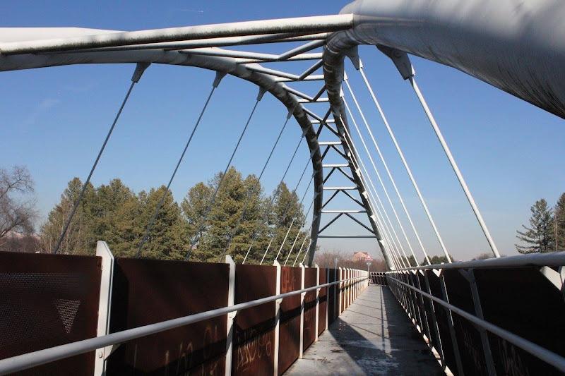 Ponte nel parco  di saretta2905