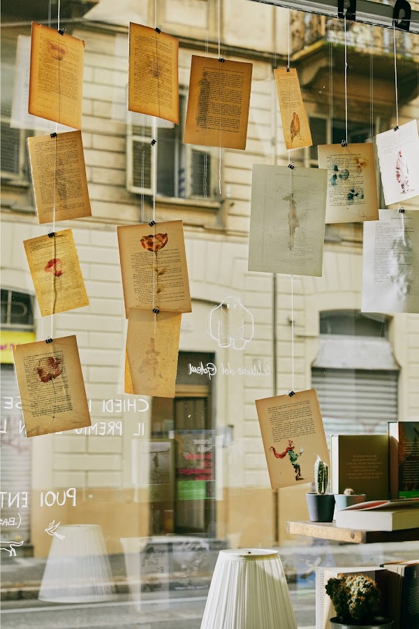Hand-drawn sketches and storybook pages line the store window, clipped onto dangling pieces of string