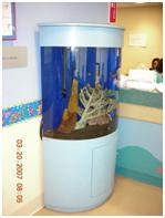 aquarium design- Half Cylinder
