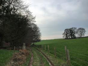 Photo: Chemin du Bois de la Rochefoucault