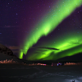 Dance Dance Dance  by Daphne Tan - Landscapes Starscapes ( lights, stars, northern lights, aurora borealis, aurora )