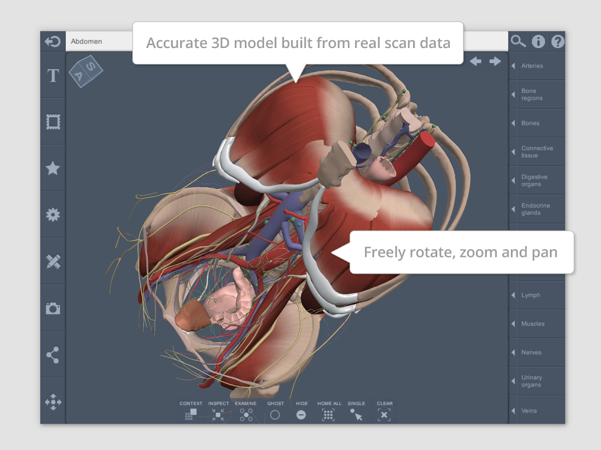 Abdomen: 3D RT - Sub - Android Apps on Google Play