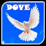 Dove Ringtones Icon