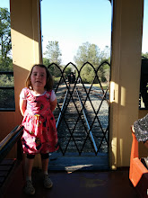 Photo: Fianna at Railtown 1897 State Historic Park in Jamestown, CA