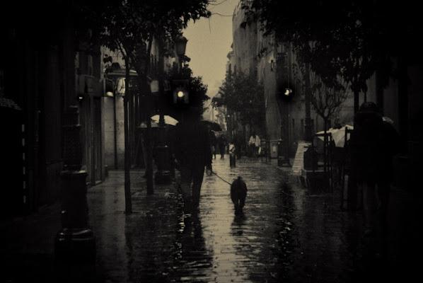 Piove, ma che fa di carmenn
