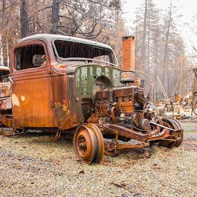 Front End by Michael Mercer - Transportation Automobiles ( junkyard car, classic car, rusty,  )