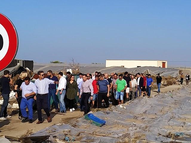 Comitiva de representantes institucionales y agricultores en la zona
