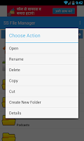 Screenshot of SS File Manager