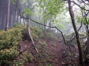ここから谷山への登りに(掘れた道を進む)