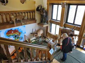 Photo: Redpath Museum at McGill University